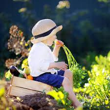 Kinder-Garten bei den Kolibris..!